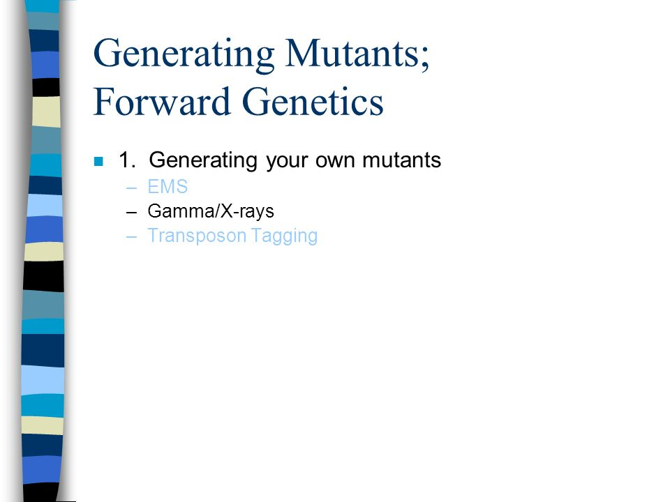 Generating Mutants; Forward Genetics