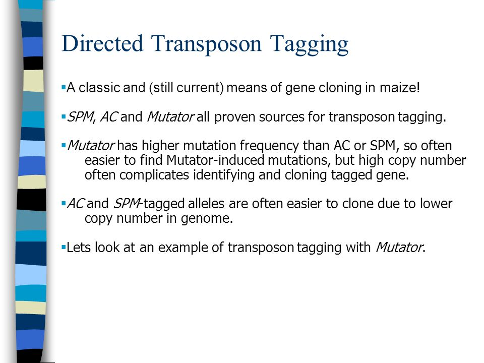 Directed Transposon Tagging