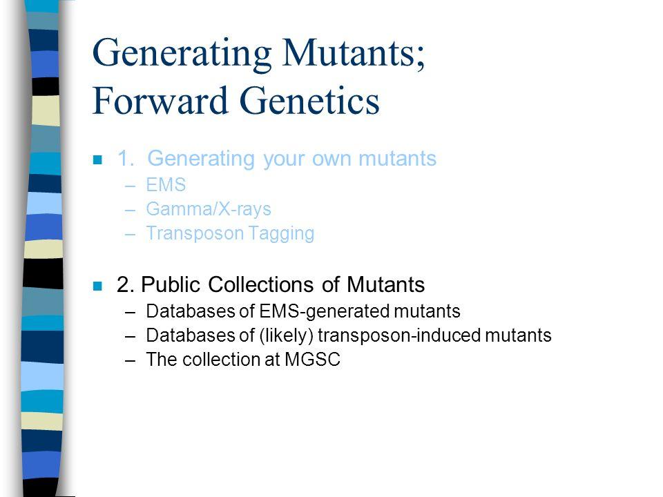 Generating Mutants; Forward Genetics