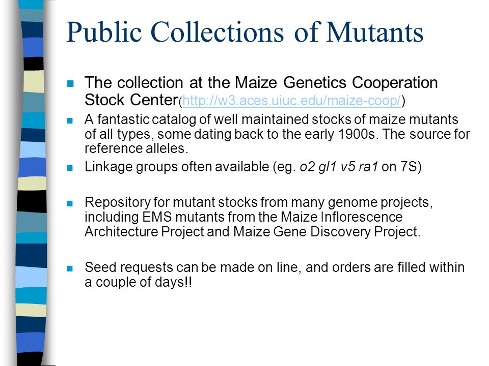 Public Collections of Mutants