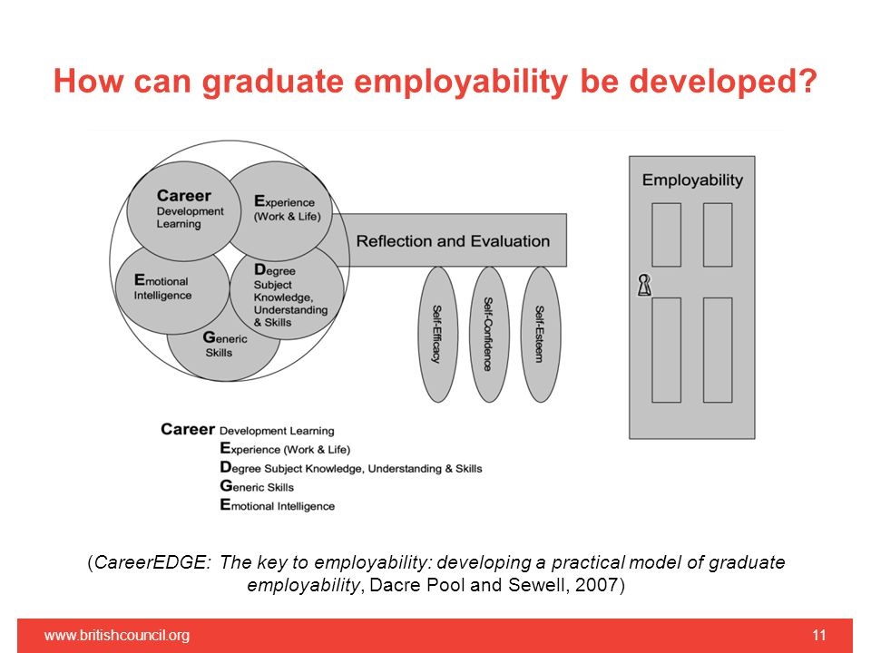 How can graduate employability be developed