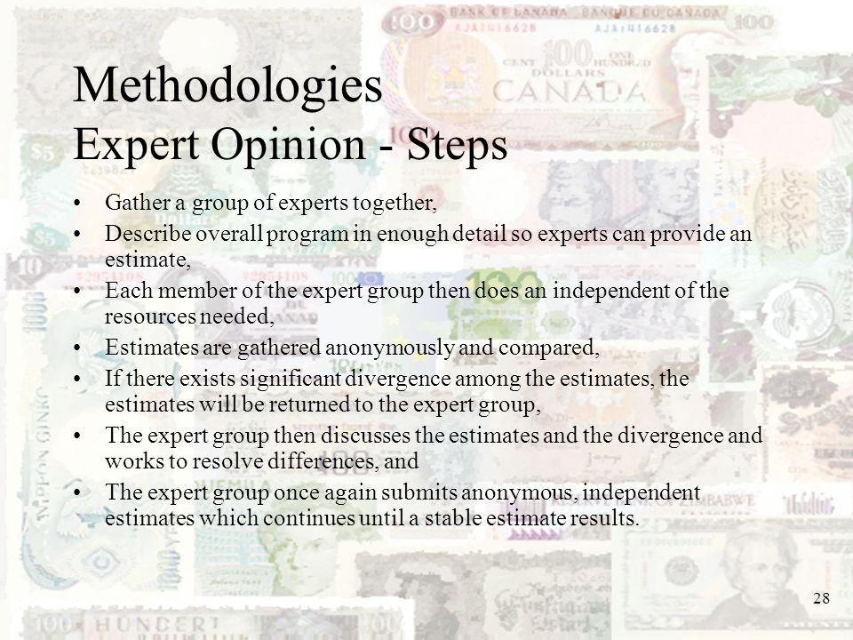 Methodologies Expert Opinion - Steps