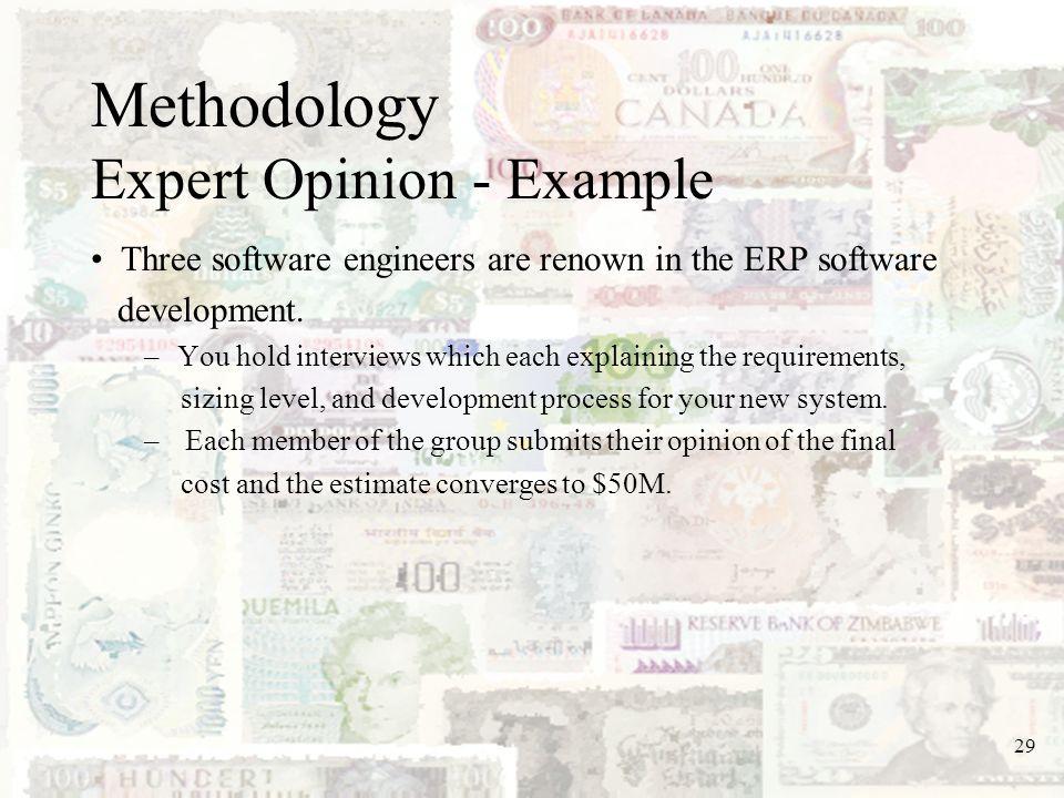 Methodology Expert Opinion - Example