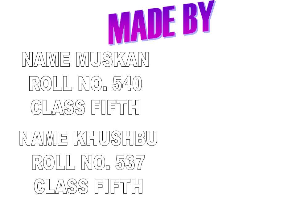 MADE BY NAME MUSKAN ROLL NO. 540 CLASS FIFTH NAME KHUSHBU ROLL NO. 537 CLASS FIFTH
