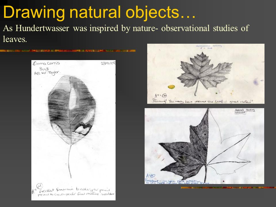 Drawing natural objects…