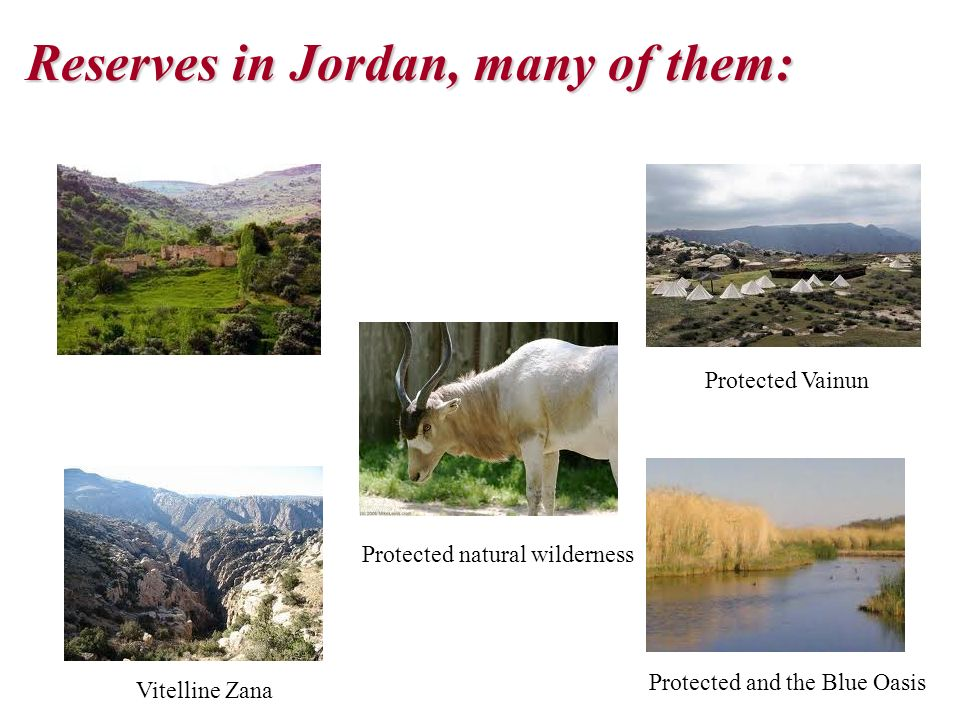 Reserves in Jordan, many of them: