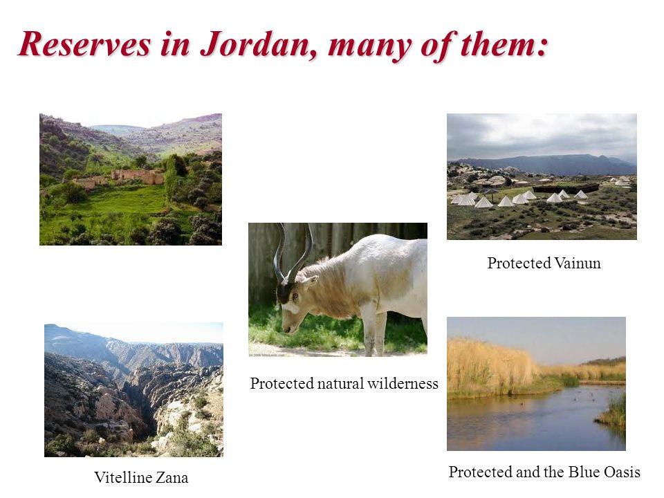 Reserves in Jordan, many of them: