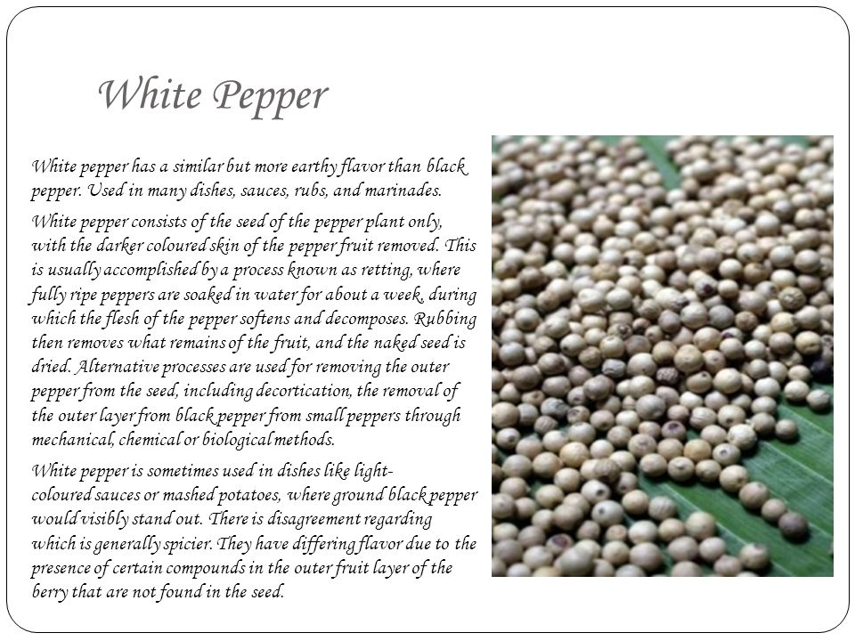 White Pepper White pepper has a similar but more earthy flavor than black pepper. Used in many dishes, sauces, rubs, and marinades.