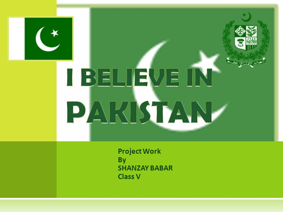 Project Work By SHANZAY BABAR Class V
