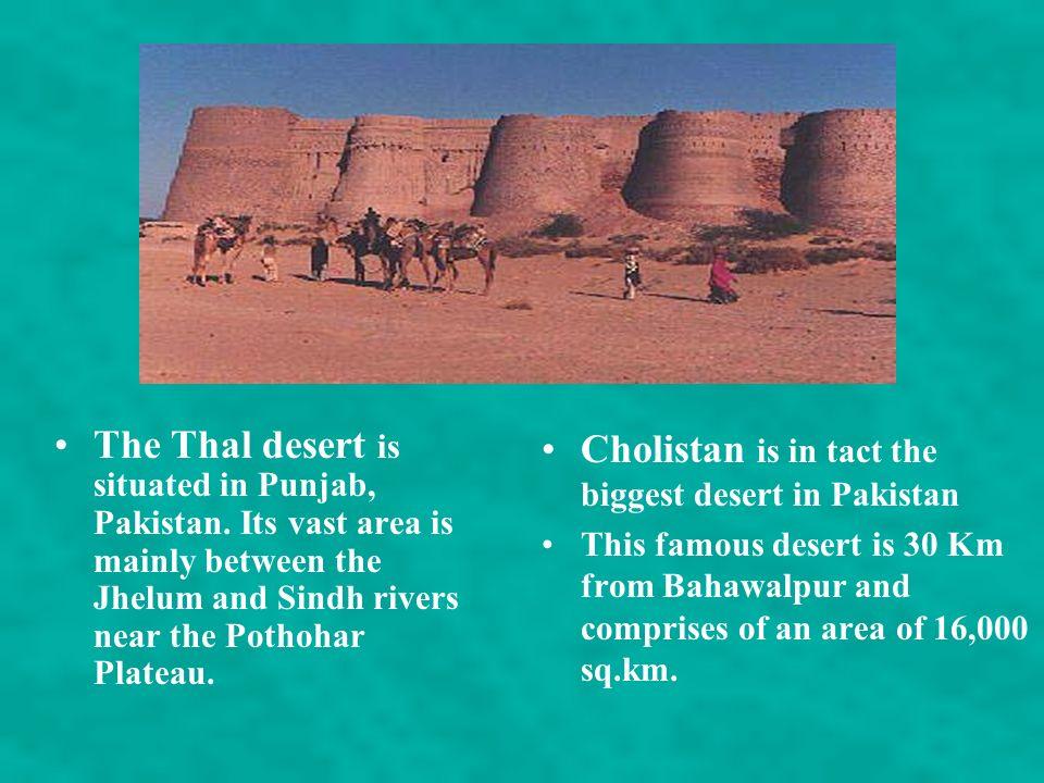 Cholistan is in tact the biggest desert in Pakistan