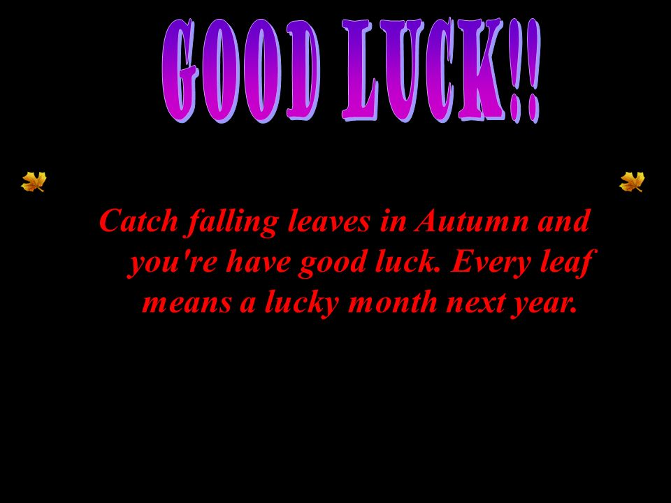 Good Luck!. Catch falling leaves in Autumn and you re have good luck.