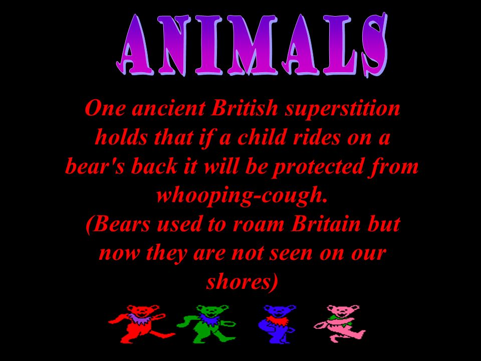 (Bears used to roam Britain but now they are not seen on our shores)