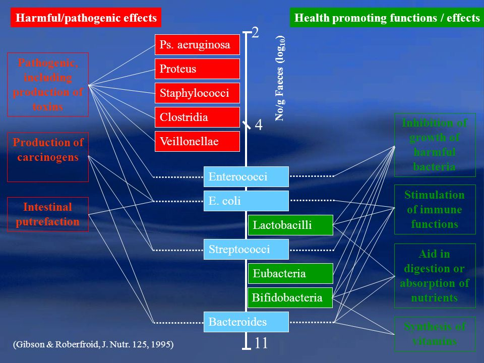 2 4 11 Harmful/pathogenic effects Health promoting functions / effects