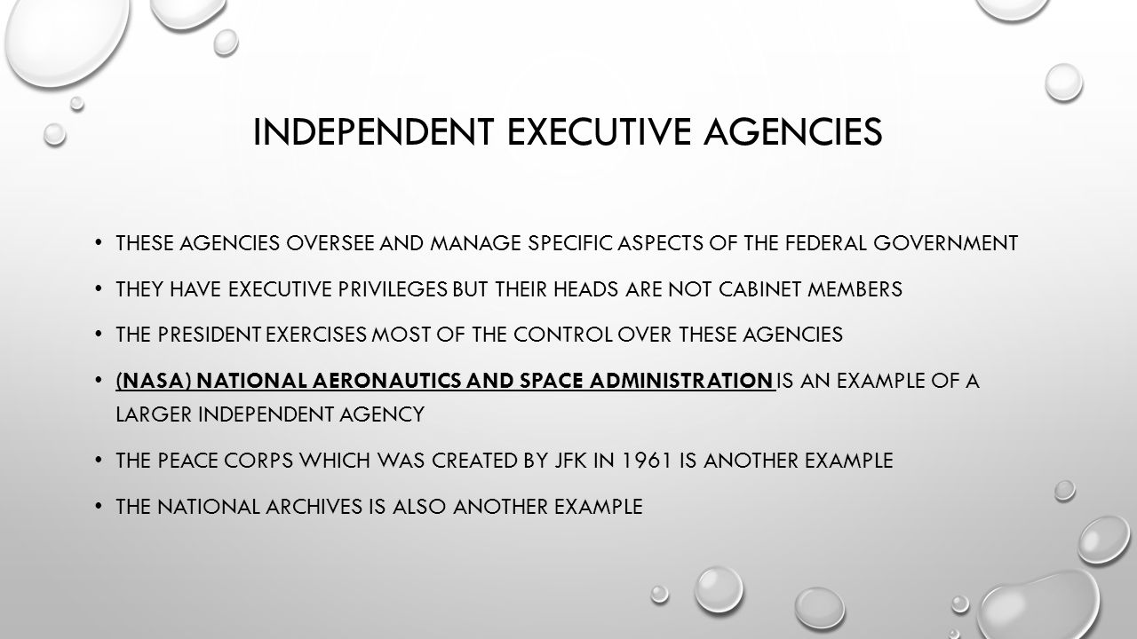 executive control over administration pdf