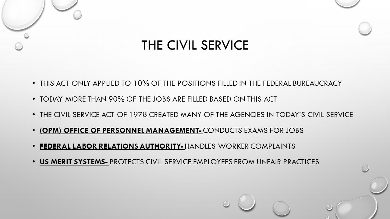 Civil Service Act : The executive branch at work ppt video online download