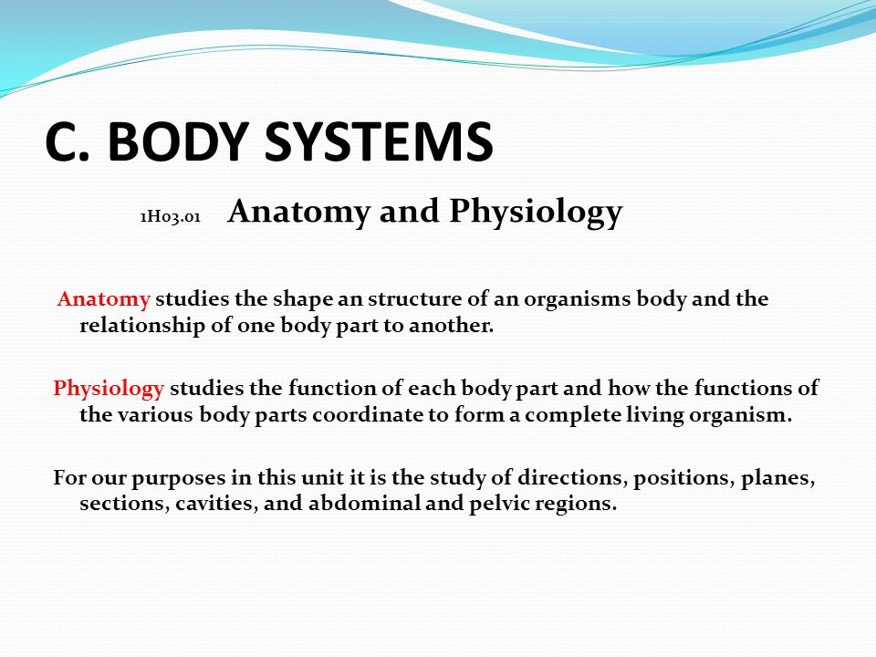 C. BODY SYSTEMS 1H03.01 Anatomy and Physiology