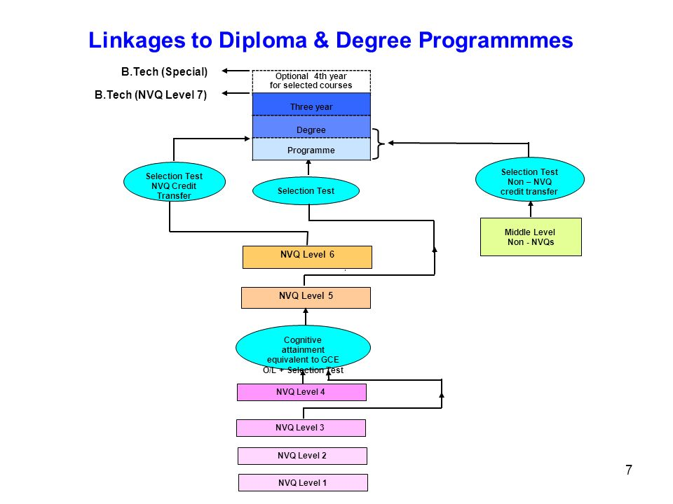 Linkages to Diploma & Degree Programmmes