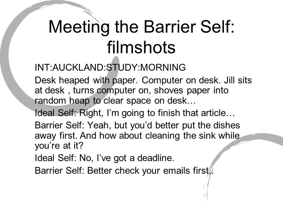 Meeting the Barrier Self: filmshots