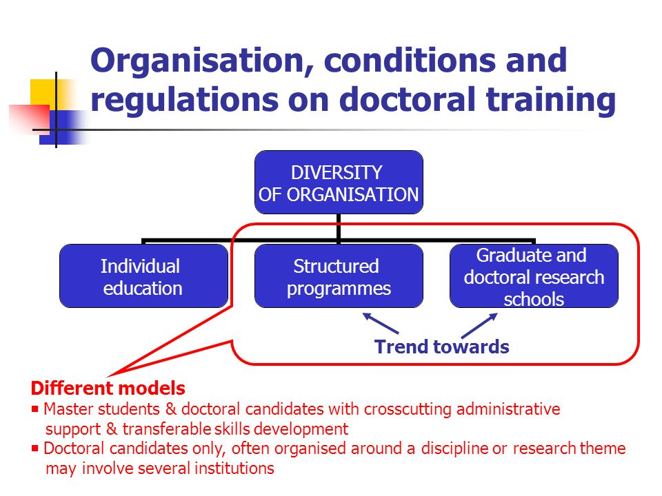 Organisation, conditions and regulations on doctoral training