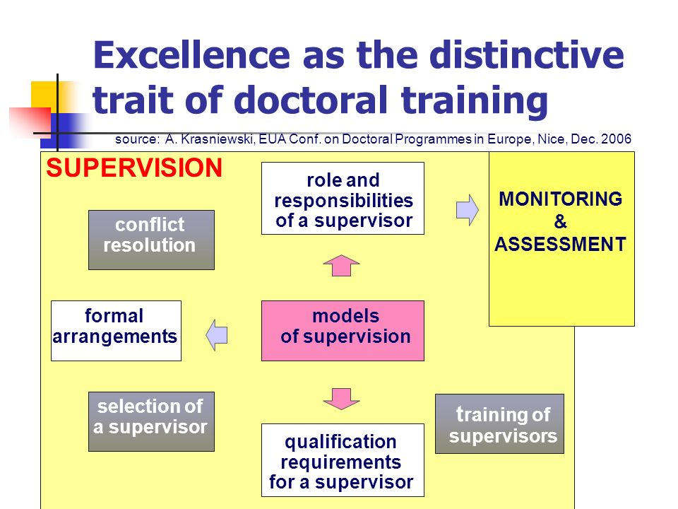 Excellence as the distinctive trait of doctoral training