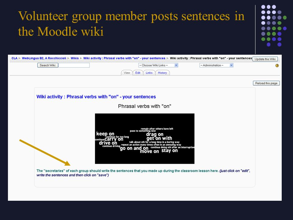 Volunteer group member posts sentences in the Moodle wiki