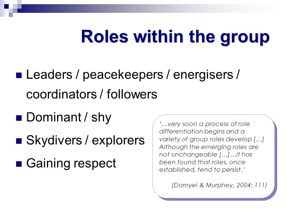 Roles within the group Leaders / peacekeepers / energisers / coordinators / followers. Dominant / shy.