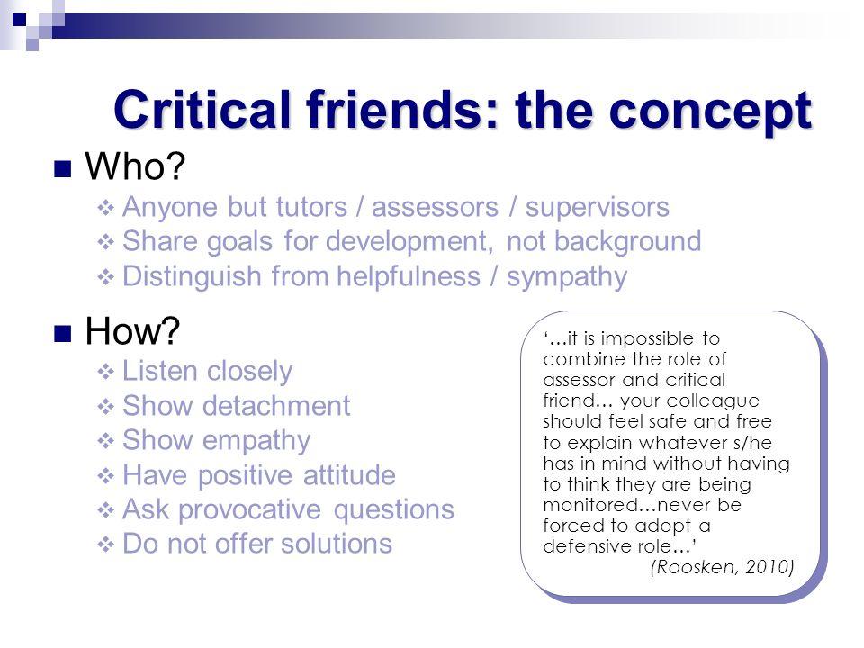 Critical friends: the concept