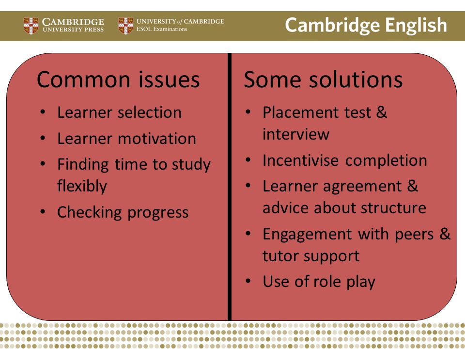 Common issues Some solutions Learner selection Learner motivation