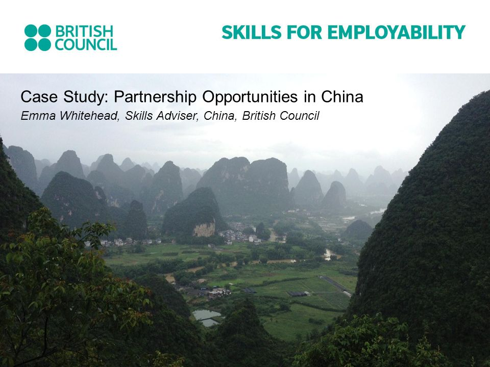 Case Study: Partnership Opportunities in China