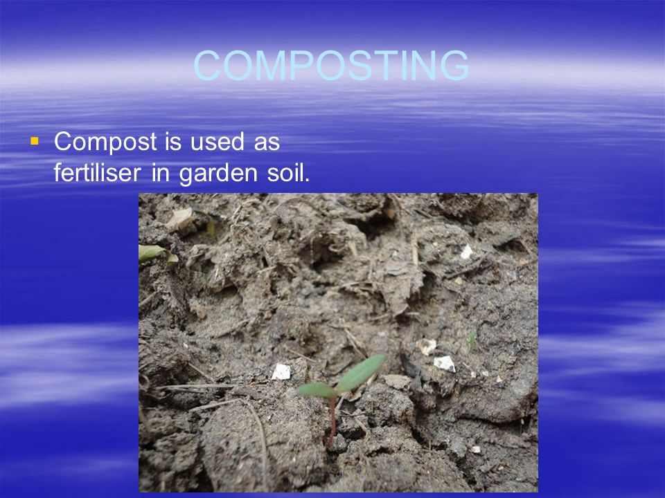 COMPOSTING Compost is used as fertiliser in garden soil.