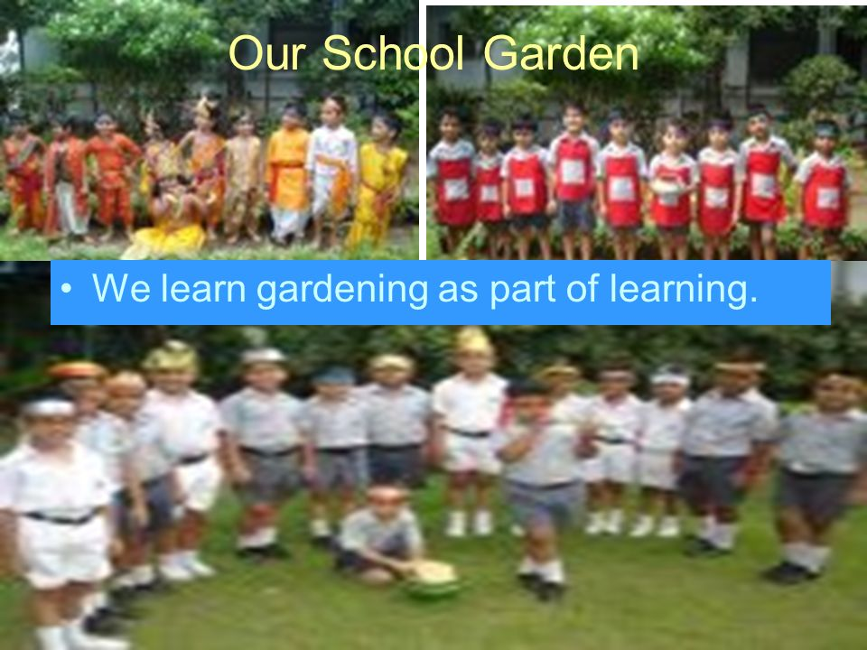 Our School Garden We learn gardening as part of learning.