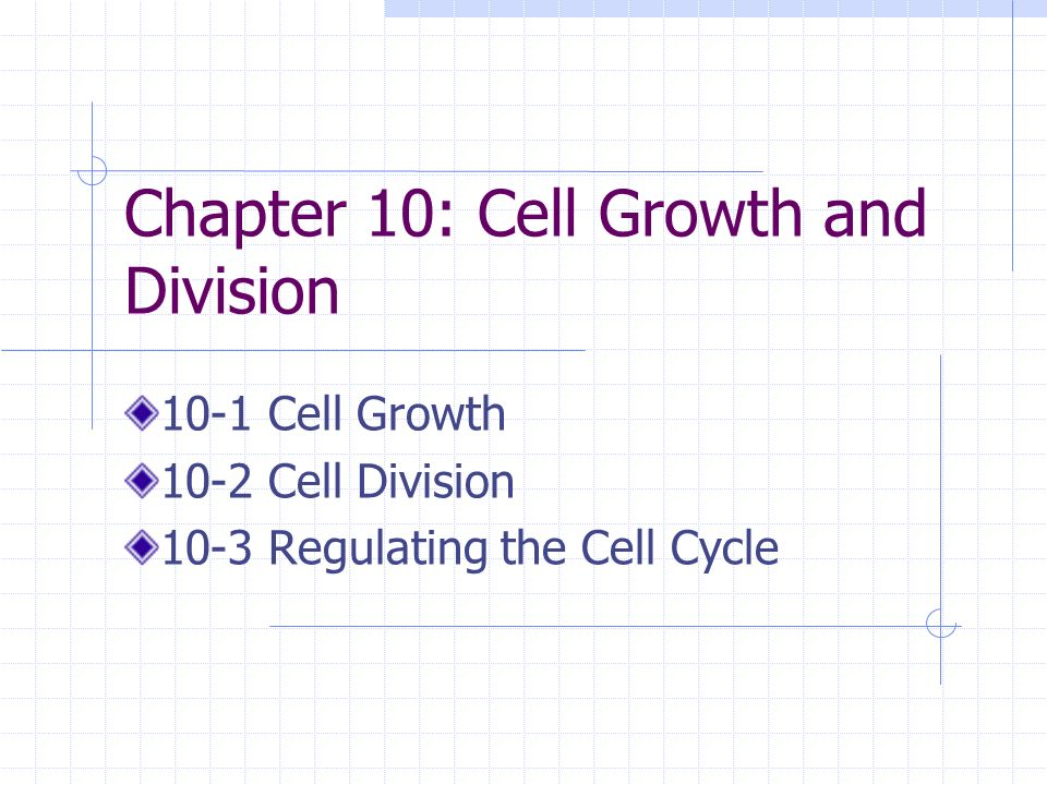 chapter 10 cell growth and division ppt video online download. Black Bedroom Furniture Sets. Home Design Ideas