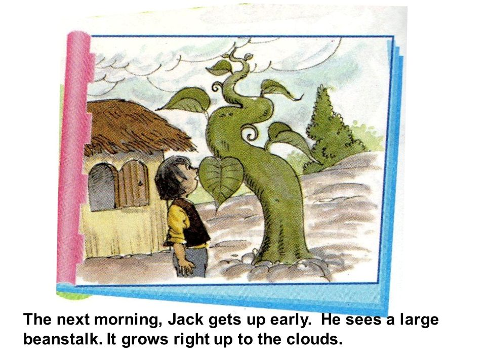 The next morning, Jack gets up early. He sees a large beanstalk