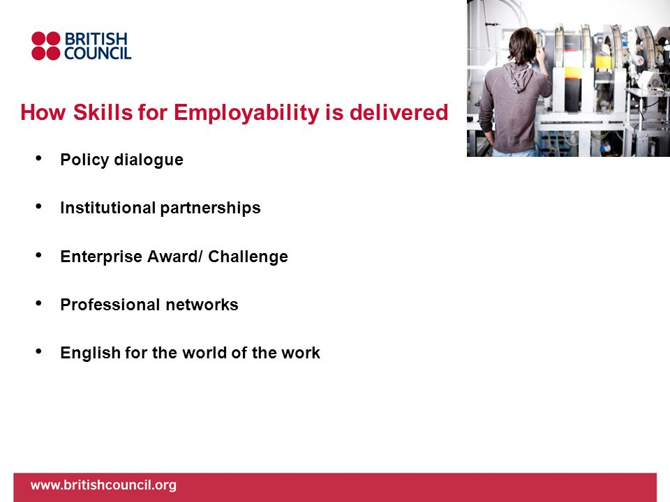 How Skills for Employability is delivered
