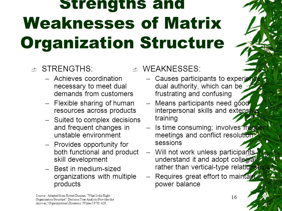 strenghts and weakness of bureaucratic organization Read chapter 3 strengths and weaknesses of current federal environmental research programs: this book assesses the strengths and weaknesses of current e.