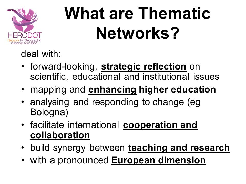 What are Thematic Networks