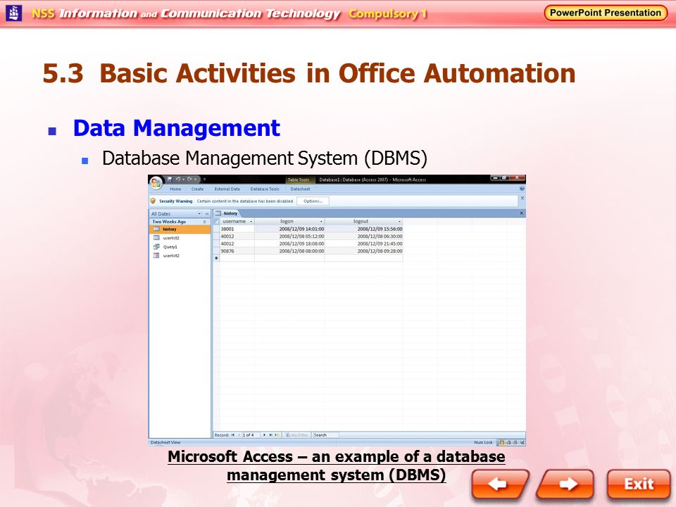 Microsoft Access – an example of a database management system (DBMS)