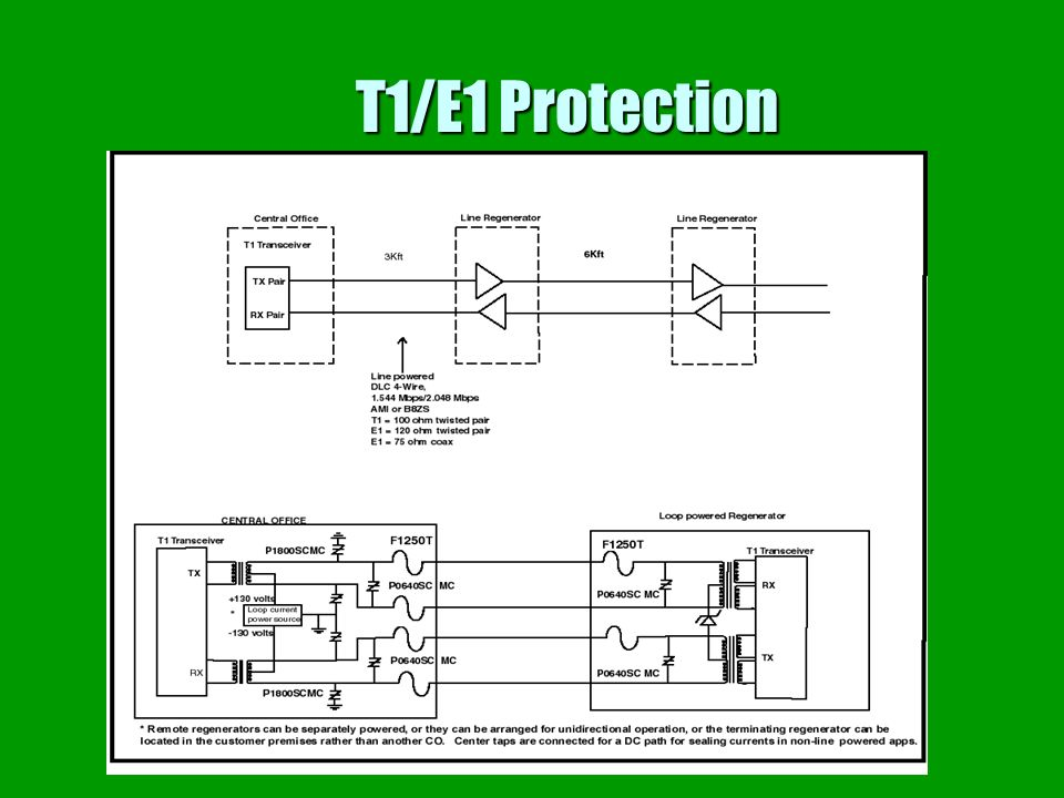 T1/E1 Protection