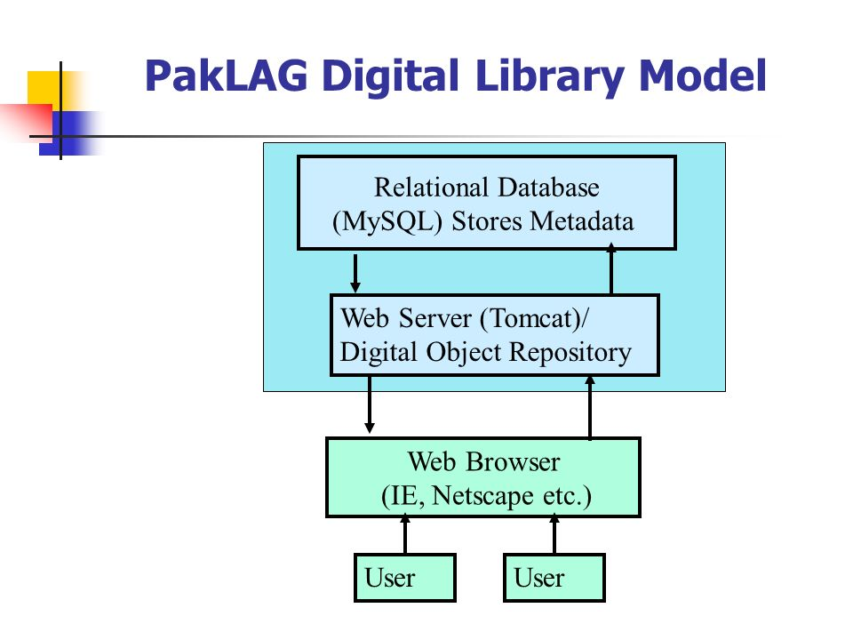 PakLAG Digital Library Model