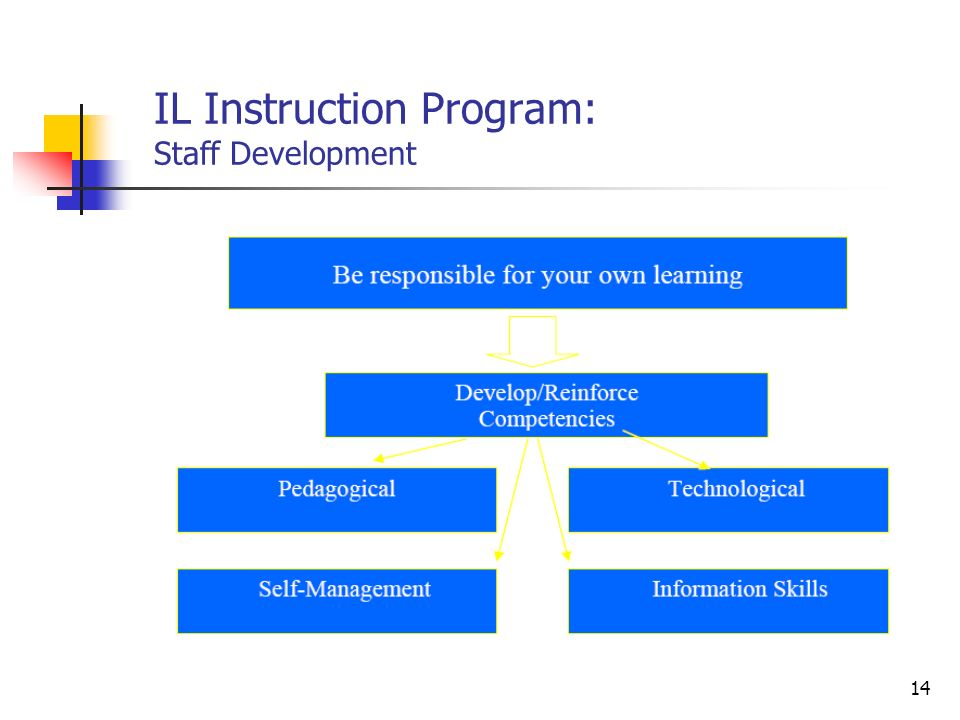IL Instruction Program: Staff Development