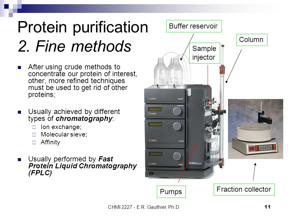 different methods of chromatography analysis Analytical techniques , methods & analytical science books pioneers in the industry, we offer official methods of analysis of aoac international, natural products isolation methods and protocols by sarker, lc/ms a practical user's guide, handbook of modern pharmaceutical analysis books, quality assurance in analytical chemistry and basic gas chromatography books from india.