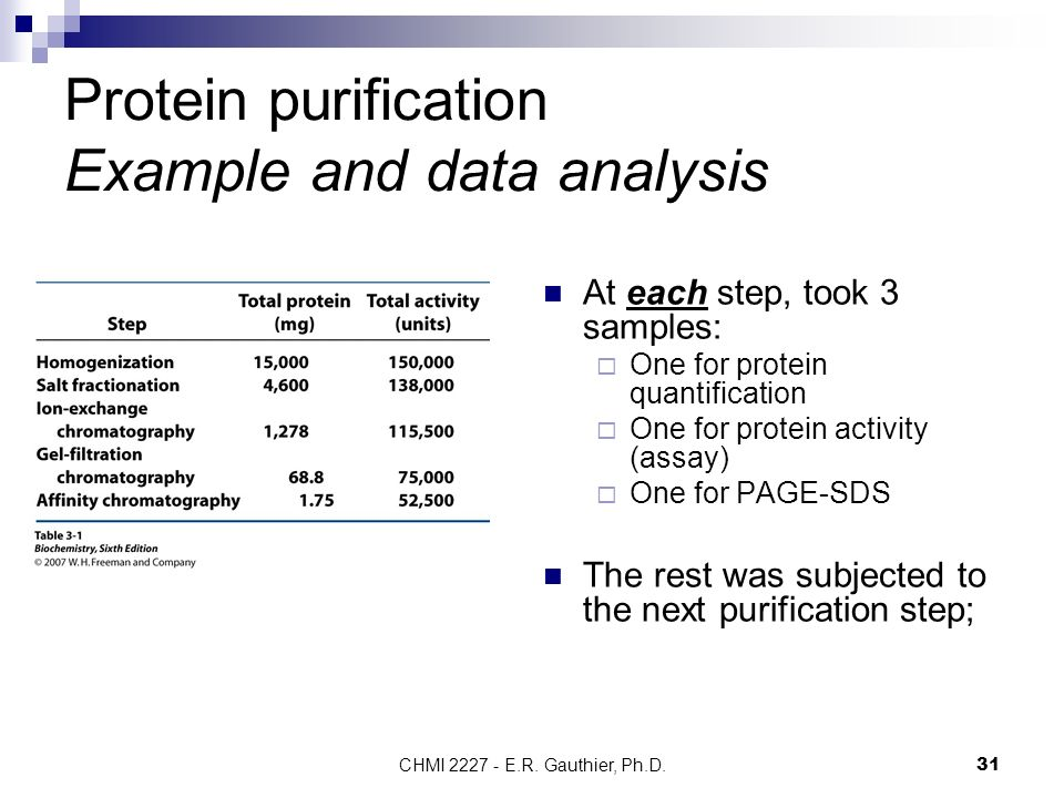 Step Wise Purification And Characterization Of A College Paper