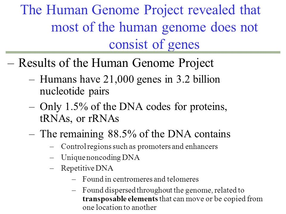 an overview of the purpose and development of the human genome project The human genome project is a global, long-term research effort to identify the   in addition to its scientific objectives, the project also aims to address ethical,.