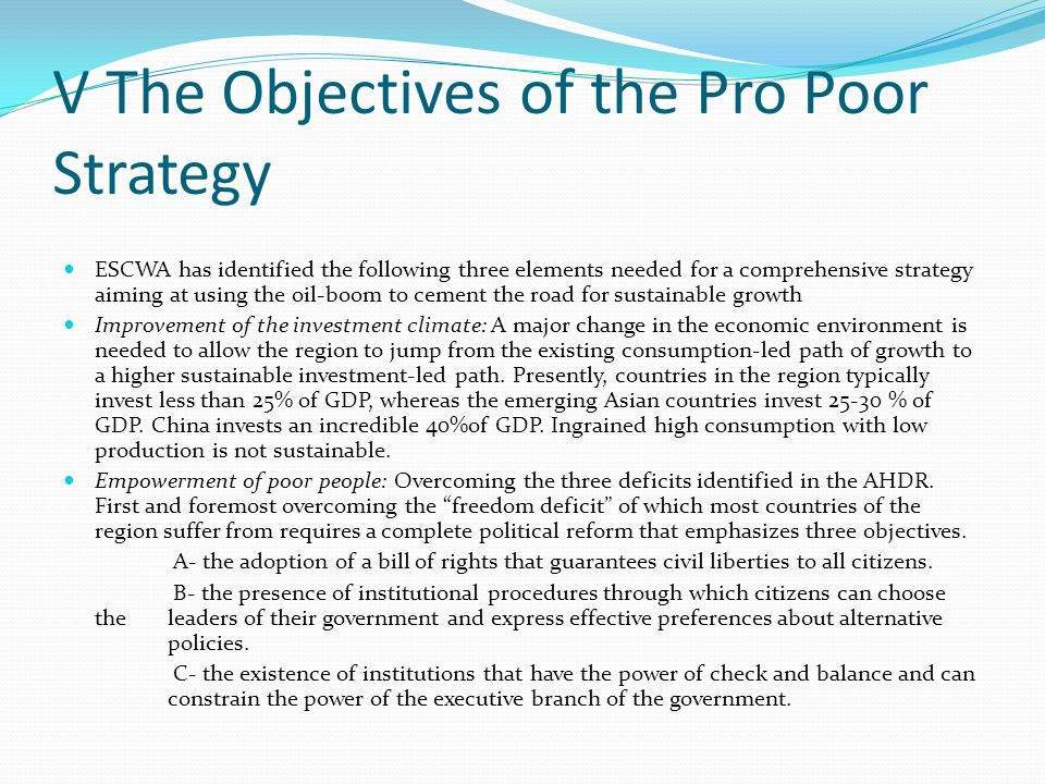 V The Objectives of the Pro Poor Strategy