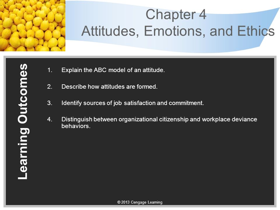 chapter 4 workplace emotions Chapter 4 ob emotions & moods 1 emotions emotions, moods and ob the workplace was considered emotions and moodfree space in the universe.