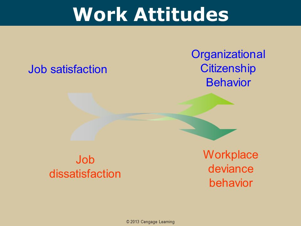 Employee Attrition and Retention in BPO Industry (Management Project)