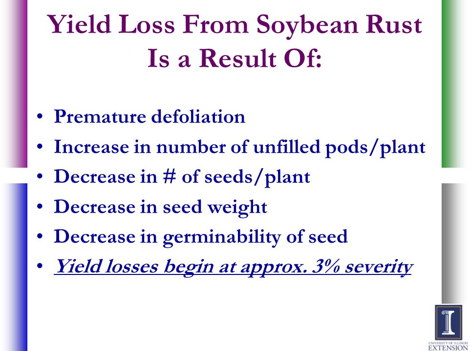 Yield Loss From Soybean Rust Is a Result Of: