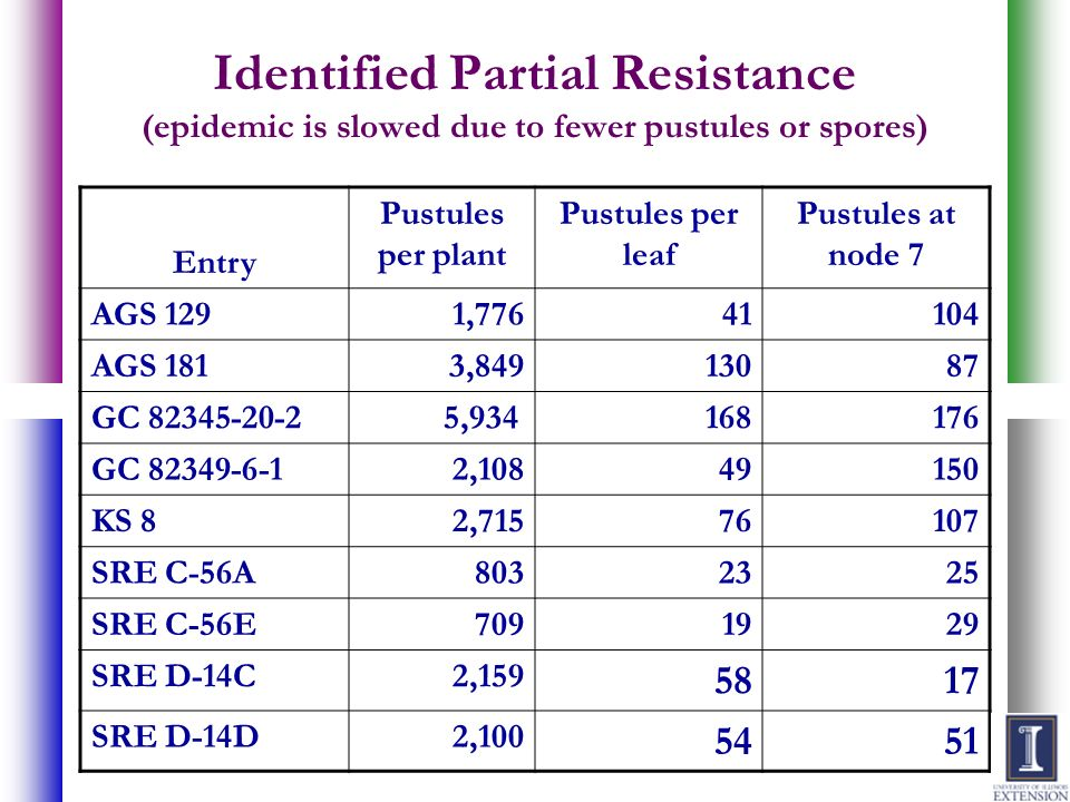 Identified Partial Resistance (epidemic is slowed due to fewer pustules or spores)