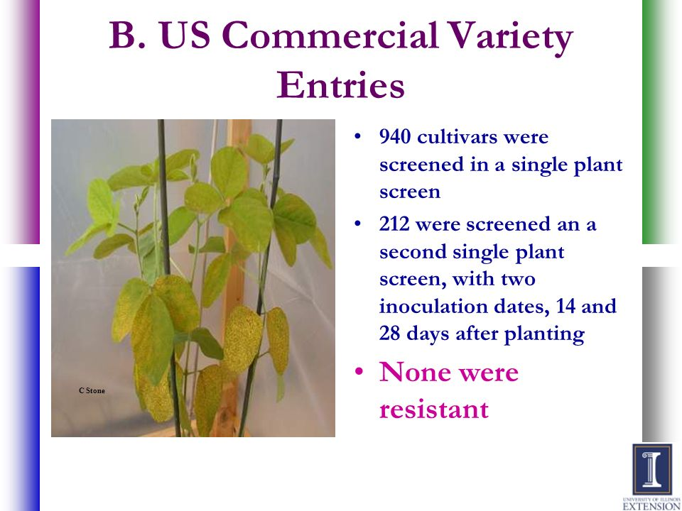 B. US Commercial Variety Entries