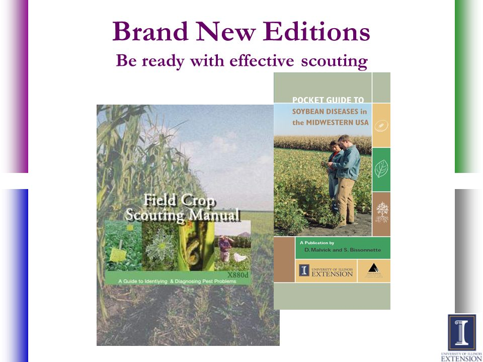 Brand New Editions Be ready with effective scouting